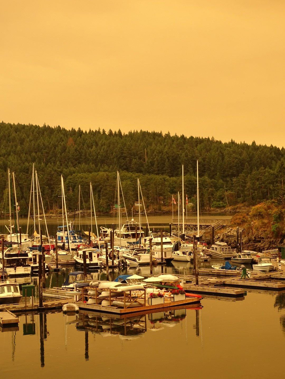 Smoke-filled skies at Otter Bay